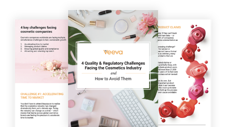 4 Regulatory and Quality Challenges