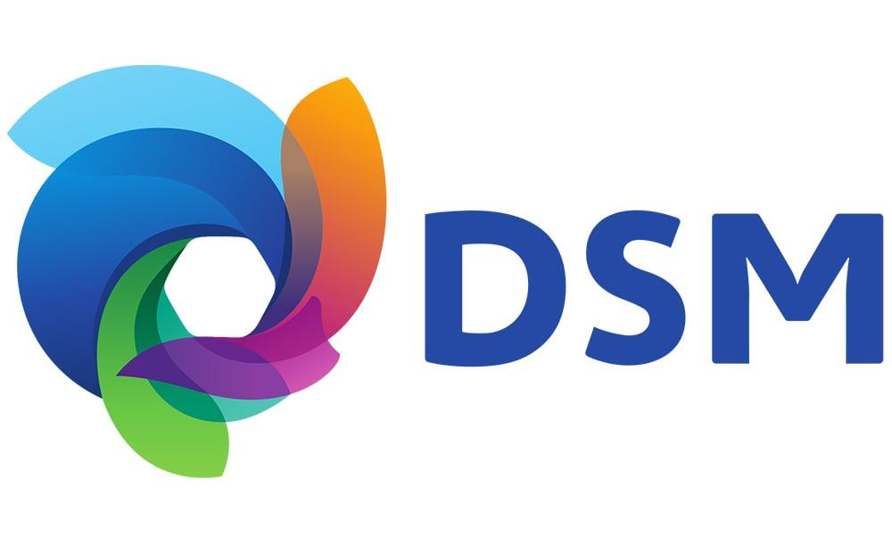 DSM Customer Success Story