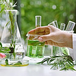 stock-photo-scientist-with-natural-drug-research-natural-organic-and-scientific-extraction-in-glassware-1481963861