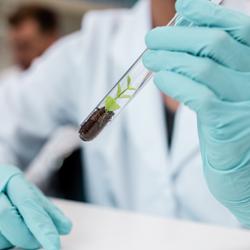 Veeva-Chemical-Crop-Science-test