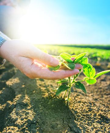 crop-science
