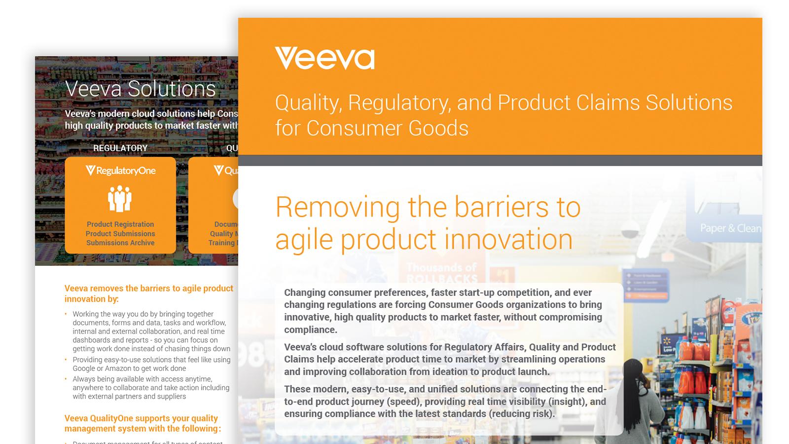 Consumer Goods Brochure