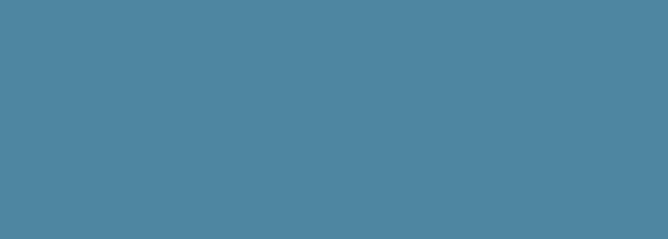 IMG 2018 Veeva Banner_Dark Blue(1)