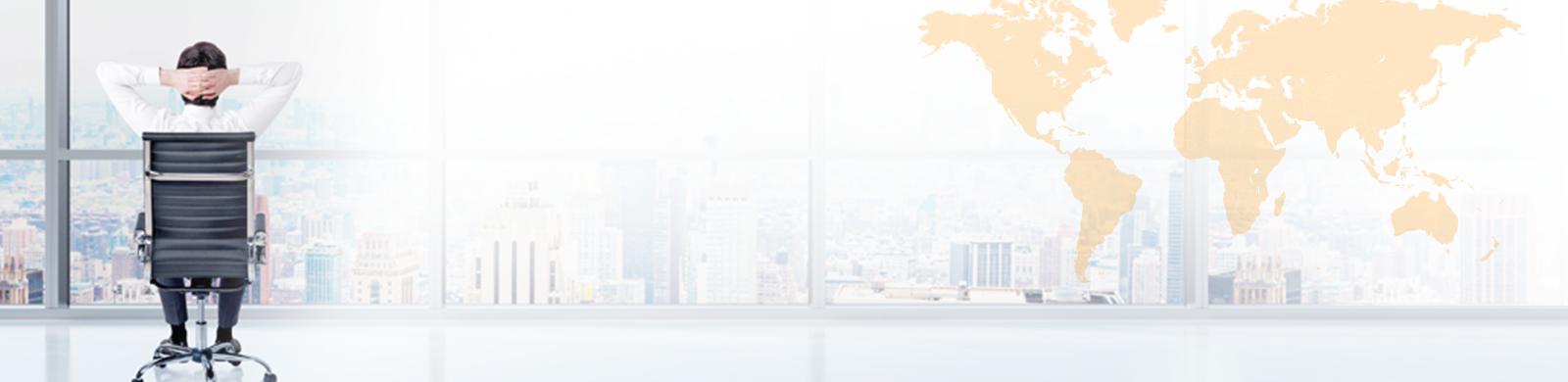 CEO Survey banner