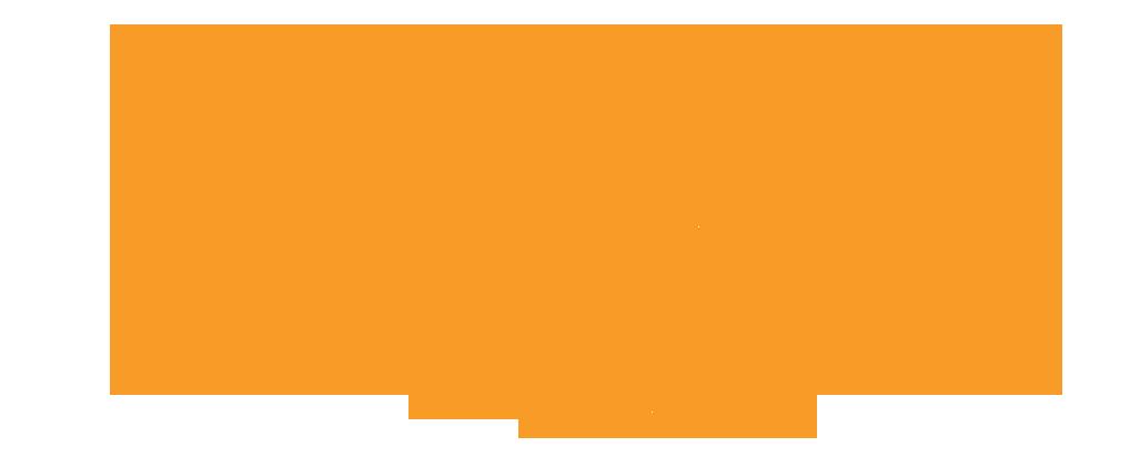 Veeva_arrow orange