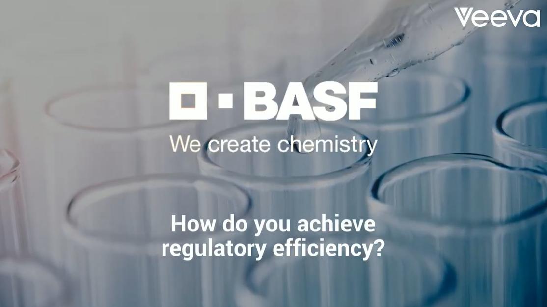 BASF, how do you achieve regulatory efficiency?